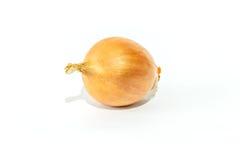 Frische Zwiebeln auf Weiß Stockbilder