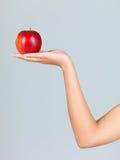Frischer Apfel Stockbilder