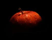Frischer Apfel Lizenzfreie Stockfotos