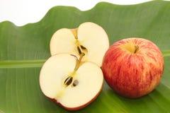 Frischer Apfel mit Scheibe Stockbilder