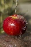 Frischer Apfel und Wasser Stockfotos