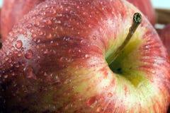 Frischer Apple lizenzfreies stockbild