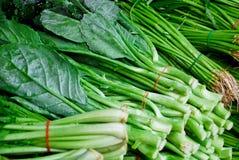 Frischer asiatischer Wirsingkohlkopfsalat im Markt Stockfoto