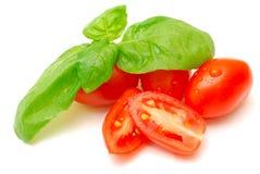 Frischer Basilikum und Tomaten Stockbild