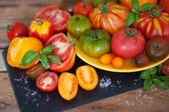 Frischer Basilikum und Tomaten lizenzfreies stockbild