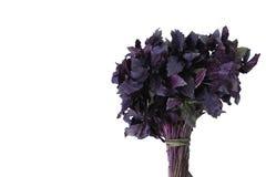 Frischer Basilikumkrautblumenstrauß Stockfotos