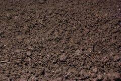 Frischer Boden Stockbild