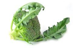 Frischer Brokkoli mit grünen Blättern Lizenzfreie Stockbilder
