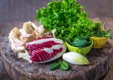 Frischer bunter Kopfsalat stockbilder