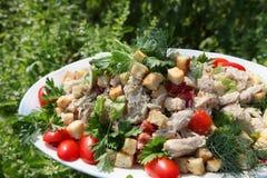 Frischer Caesar-Salat Lizenzfreies Stockbild