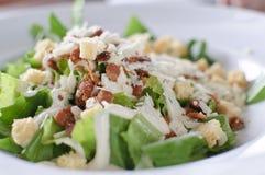 Frischer Caesar-Salat Lizenzfreie Stockbilder
