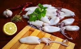 Frischer Calamari kalmar Meeresfrüchte, Zitrone, Knoblauch, Pfeffer, Petersilie lizenzfreie stockfotografie