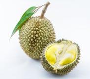 Frischer Durian auf weißem Hintergrund Lizenzfreies Stockfoto