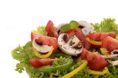 Frischer einfacher Salat Lizenzfreie Stockfotografie
