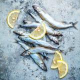 Frischer Fang Shishamo-Fisch ärgert völlig flache Lage auf schäbigem Metallba Lizenzfreie Stockfotografie