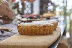 Frischer gebackener Apfelkuchen mit Konzeptdekoration stockbild
