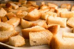 Frischer gebratener gebackener knusperiger goldener Croutonimbiß wie Cracker vom Weißbrot lizenzfreies stockbild