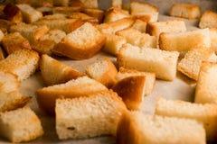 Frischer gebratener gebackener knuspriger knusperiger goldener Croutonimbiß wie Cracker vom Weißbrot stockbild