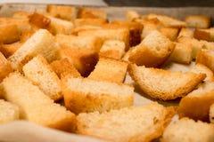 Frischer gebratener gebackener knuspriger knusperiger goldener traditioneller Imbiss wie Cracker vom Weißbrot lizenzfreie stockbilder