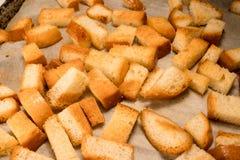 Frischer gebratener gebackener traditioneller Imbiss der knusprigen knusperigen goldenen Croutons vom Weißbrot lizenzfreie stockfotos
