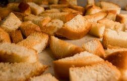 Frischer gebratener gebackener traditioneller Imbiss der knusprigen knusperigen goldenen Croutons wie Cracker lizenzfreie stockbilder