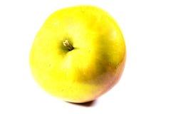 Frischer gelber Apfel Stockfotografie