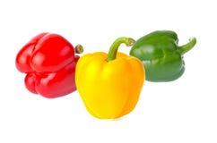 Frischer Gemüsepaprika lokalisiert auf weißem Hintergrund Stockbilder