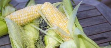 Frischer geschälter Mais Lizenzfreie Stockfotografie