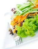 Frischer geschmackvoller grüner Salat Stockbilder