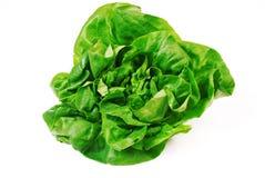 Frischer grüner Salat auf Weiß stockfotos