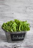 Frischer grüner Blattkopfsalat in einem Weinleseeimer Lizenzfreie Stockfotografie
