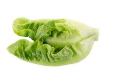Frischer grüner Lattich lokalisiert auf weißem Hintergrund Stockfoto