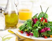 Frischer grüner Salat stockbild