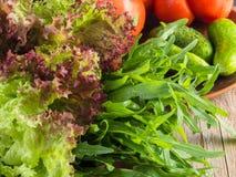 Frischer grüner Salat mit Arugulatomaten und -gurken Lizenzfreies Stockfoto