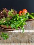Frischer grüner Salat mit Arugulatomaten und -gurken Lizenzfreies Stockbild
