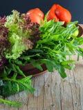 Frischer grüner Salat mit Arugulatomaten und -gurken Stockfotografie