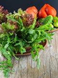 Frischer grüner Salat mit Arugulatomaten und -gurken Stockbilder