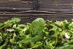 Frischer grüner Salat mit Spinat, Arugula und Kopfsalat lizenzfreies stockfoto