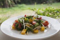 Frischer grüner Salat mit Tomate, Gemüsepaprikas, Sprösslingen und indischem Sesam Stockbild