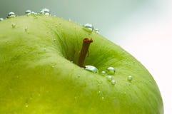 Frischer grüner Apfel Stockfotos