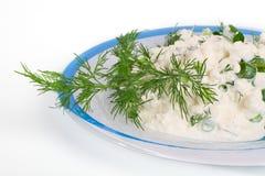Frischer Hüttenkäse und Fenchel auf einer Platte. Lizenzfreie Stockfotos