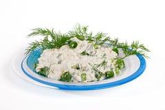 Frischer Hüttenkäse und Fenchel auf einer Platte. Stockfoto