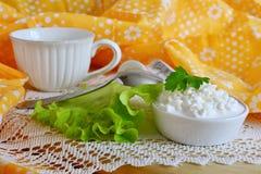 Frischer Hüttenkäse und Milch stockfotografie