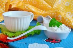 Frischer Hüttenkäse und Milch lizenzfreie stockfotografie