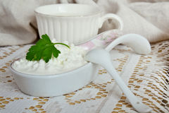 Frischer Hüttenkäse und Milch Lizenzfreie Stockfotos