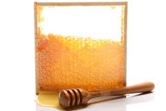 Frischer Honig Lizenzfreies Stockbild