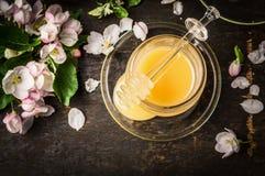 Frischer Honig im Glas mit Frühlingsblüte von Obstbäumen auf dunklem hölzernem Hintergrund Stockfotos