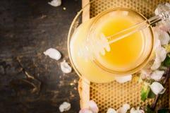 Frischer Honig im Glasgefäß auf Bienenwabe und rustikalem hölzernem Hintergrund Stockfotografie