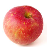 Frischer japanischer Apfel lokalisiert Stockbilder