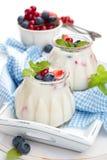Frischer Joghurt mit Beeren Stockfotos